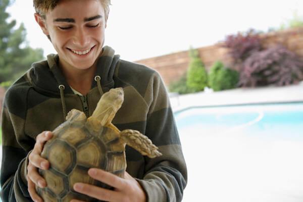 Парень с черепахой