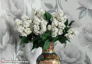 что подарить тельцу женщине-цветы-белая сирень