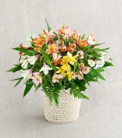 цветы в подарок учиетльнице