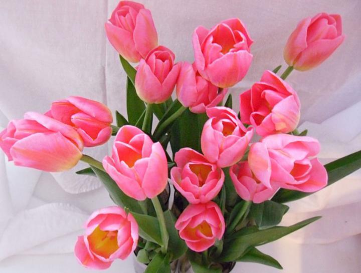 С 8 Марта цветы маме